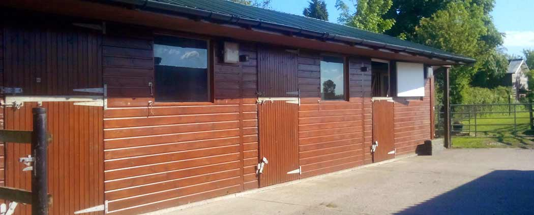 Cattery Bristol Parkfield boarding chalets